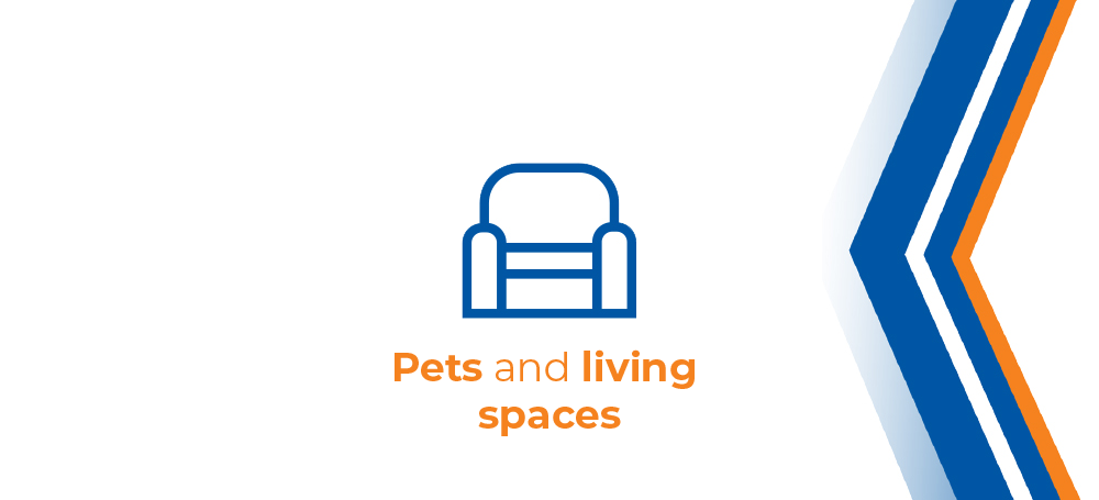 Headline graphics. Topic: pets and living spaces. How to and what to look out for.